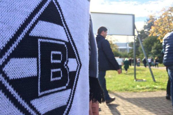 BMG scarf