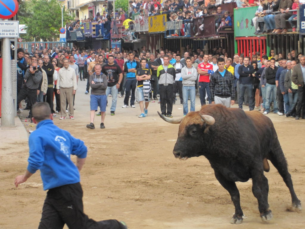 Spain May 2013 358