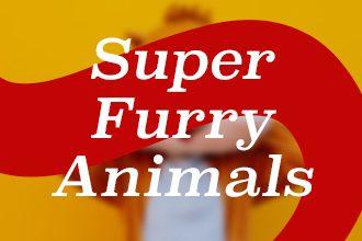 Football mascots: Super furry animals