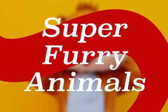 Football mascots: Super furry animals